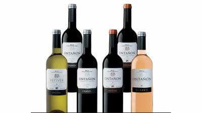 Lote de vinos variados 6 botellas, Bodegas Ontañón