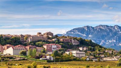 Excursión Vitoria y Rioja