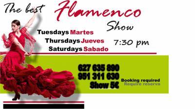 Flamenco Show Tipi Tapa
